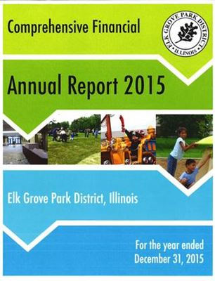 Comprehensive Financial Annual Report 2015