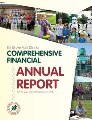 2017 Comprehensive Financial Annual Report
