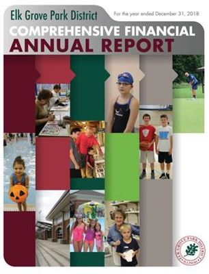 2018 Comprehensive Financial Annual Report