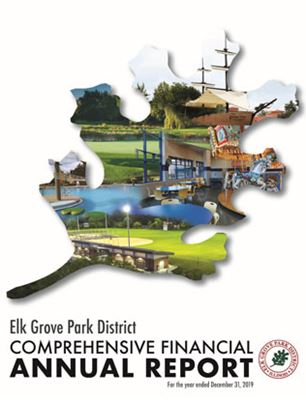 2019 Comprehensive Annual Financial Report